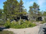 21.05. Ein Strandspaziergang in Norrmjöle :: 0008
